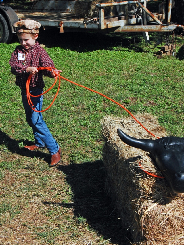 Cattle Roping